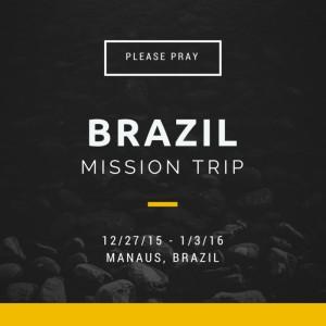 brazilcanva