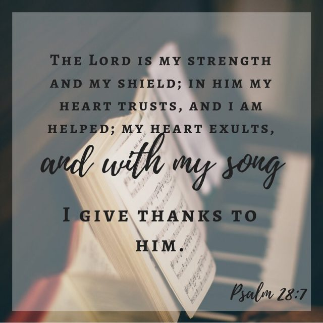 Psalm 28 The Lord Is My Strength and My Shieldhellip