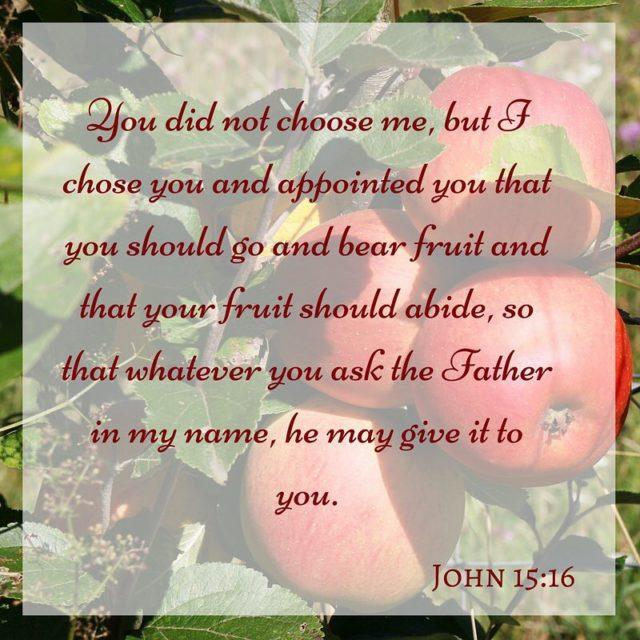 John 151217 12 This is my commandment that you lovehellip