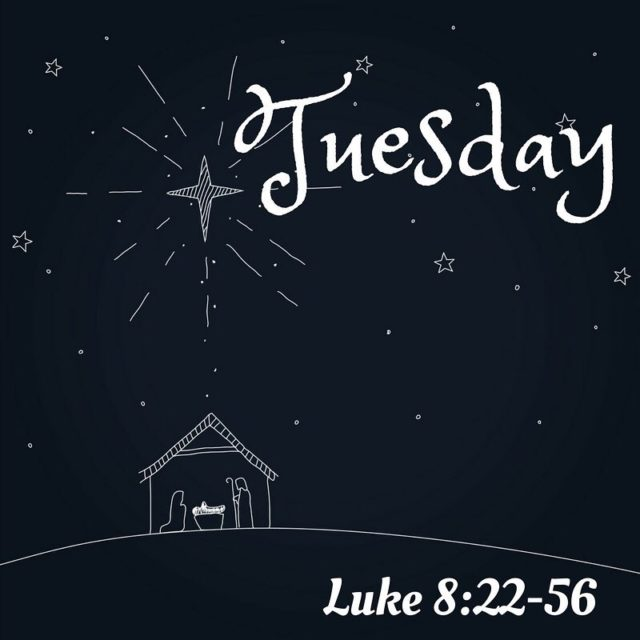 Daily Scripture Reading for Tuesday December 12th Luke 82256 Jesushellip